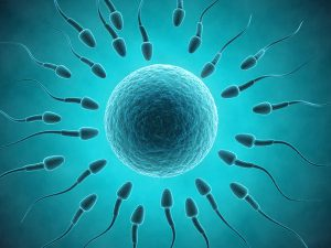 sperm treatment in lahore best andrologist for sperm count increase increase motility of sperms increase morphology of sperm