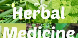 Herbal Medicine Herbal Medicine in Lahore natural remedies herbs herbal remedies holistic medicine nature medicine home remedies homeopathic remedies alternative medicine chinese medicine natural herbs chinese herbs herbal supplements chinese herbal medicine herbal treatment natural cures herbal therapy traditional chinese medicine healing herbs traditional medicinals natural herbal medicine herbal cure herbal plants natural health remedies bestherbal treatment natural home remedies